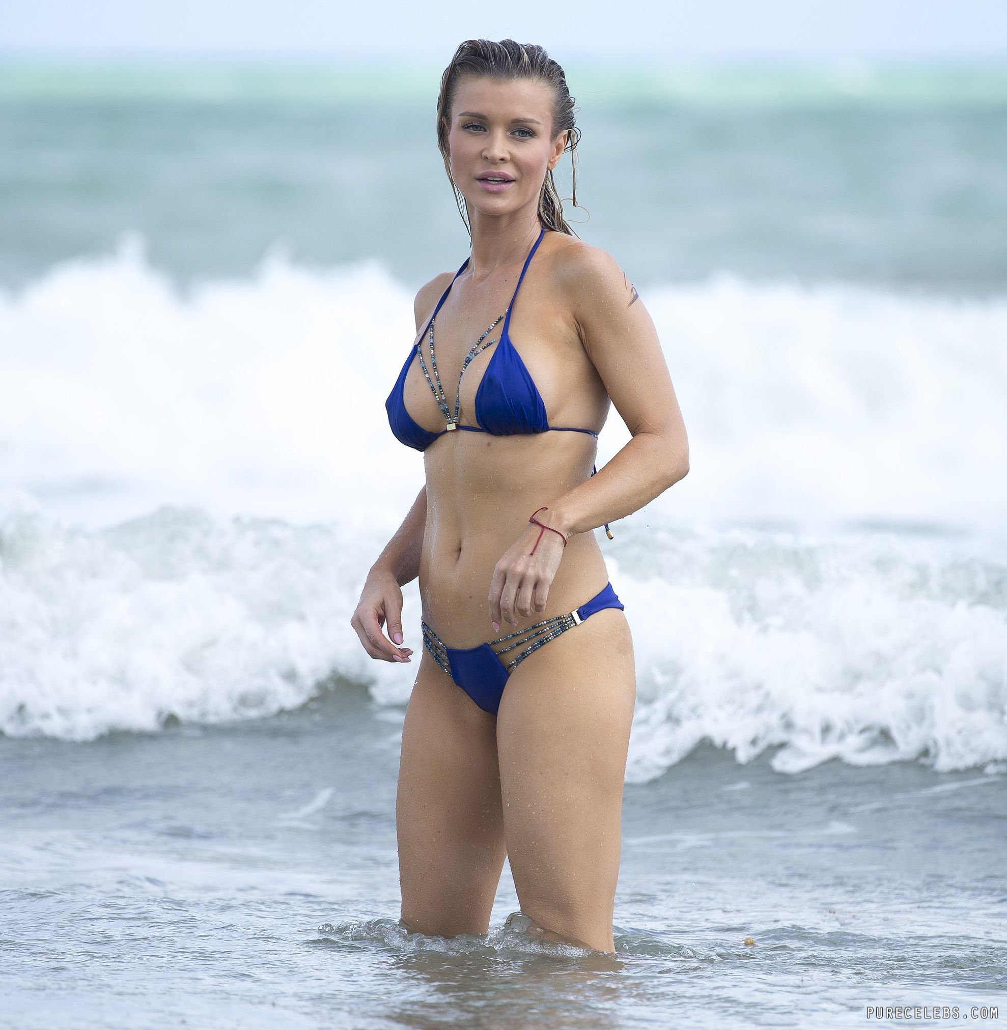 Joanna Krupa Paparazzi Bikini Ass Photos And Fully Nude